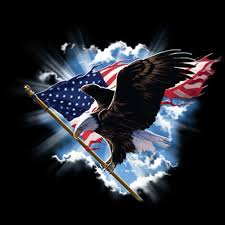 eagle and flag for blog