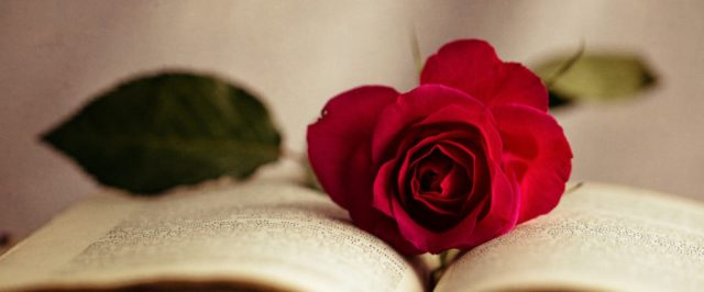 cropped-rose-and-book1.jpg