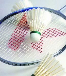 badmitton rackets and birdie
