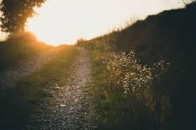 mountain path towards light