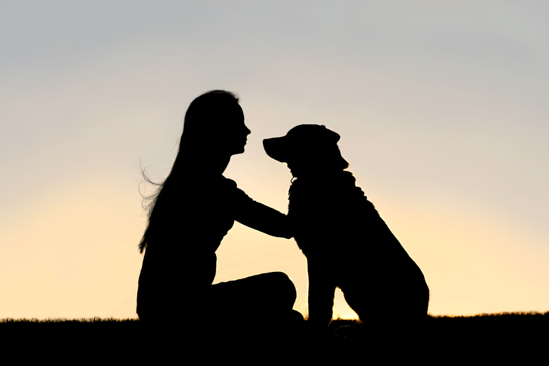 silhouette of girl and dog